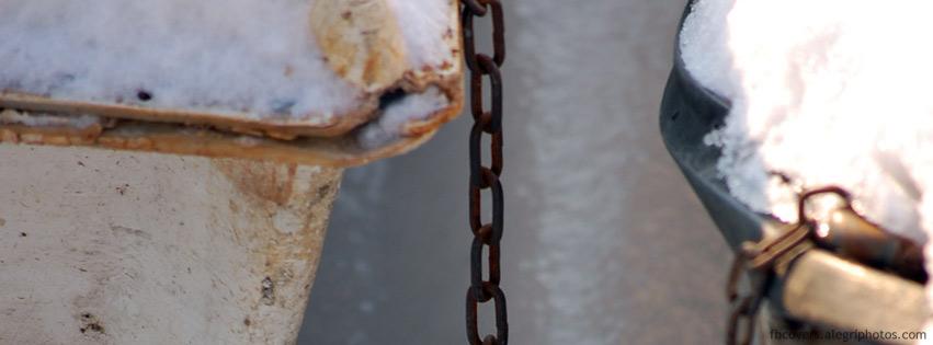 اغلفة فيسبوك الطيور الجليد 2012,